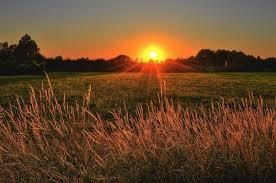 वैज्ञानिकको अनुसार सूर्यको तापक्रम अप्रत्याशित रुपले घट्ने