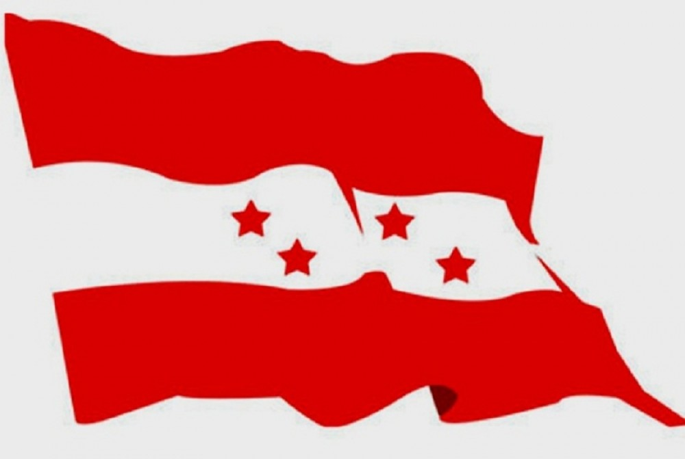 बस्नेतको निधनप्रति काँग्रेस संसदीय दलको दुःख व्यक्त