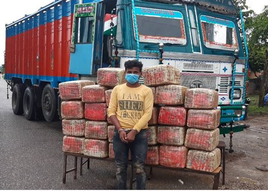 चितवनमा भारतीय ट्रकमा भेटियो २७० केजी गाँजा